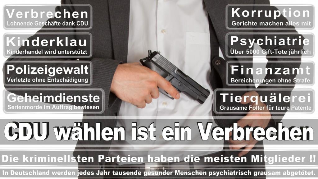 Landtagswahl Baden-Württemberg 2016, CDU, SPD, Landtagswahl Baden-Württemberg 2016,Landtagswahl-Baden-Wuerttemberg-2016 (291) Landtagswahl Baden-Württemberg 2016