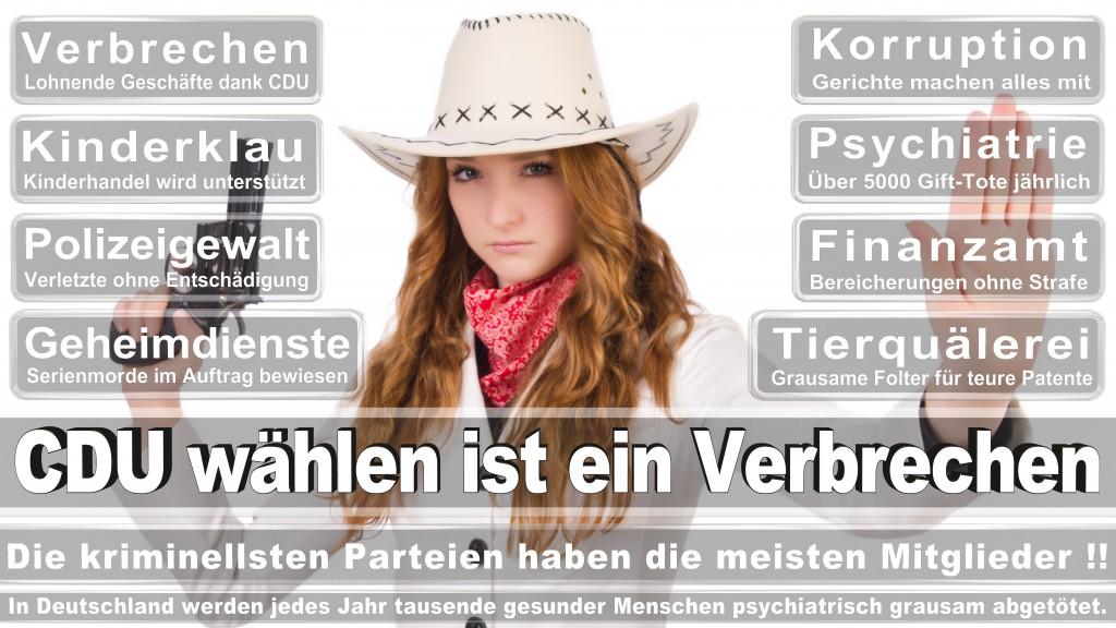 Landtagswahl Baden-Württemberg 2016, CDU, SPD, Landtagswahl Baden-Württemberg 2016,Landtagswahl-Baden-Wuerttemberg-2016 (293) Landtagswahl Baden-Württemberg 2016