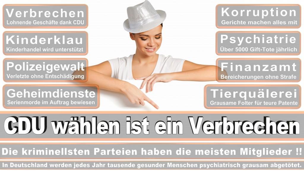 Landtagswahl Baden-Württemberg 2016, CDU, SPD, Landtagswahl Baden-Württemberg 2016,Landtagswahl-Baden-Wuerttemberg-2016 (297) Landtagswahl Baden-Württemberg 2016