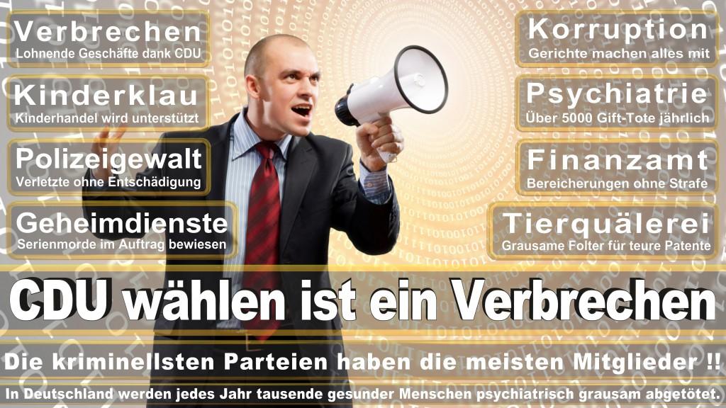 Landtagswahl Baden-Württemberg 2016, CDU, SPD, Landtagswahl Baden-Württemberg 2016,Landtagswahl-Baden-Wuerttemberg-2016 (299) Landtagswahl Baden-Württemberg 2016