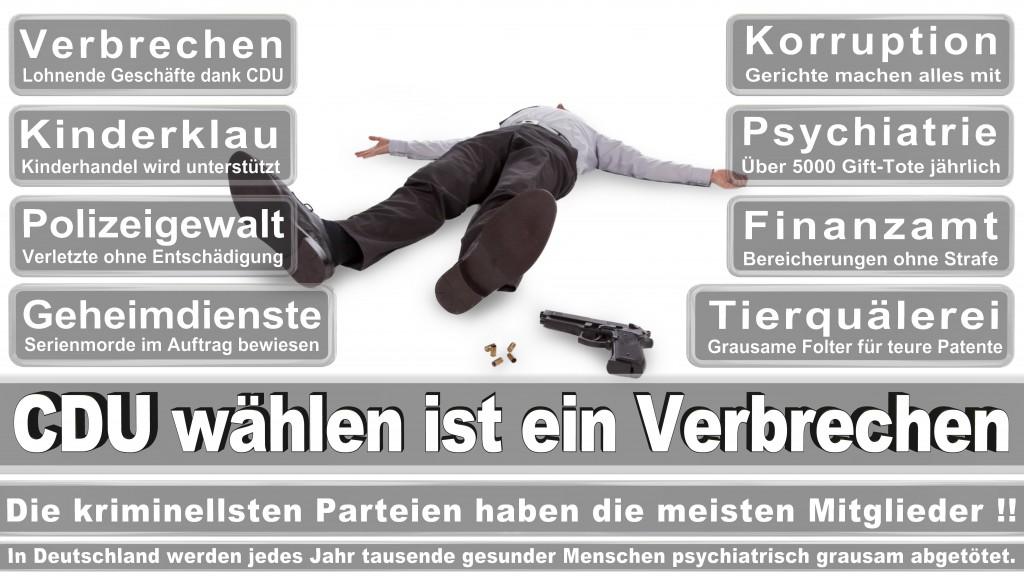 Landtagswahl Baden-Württemberg 2016, CDU, SPD, Landtagswahl Baden-Württemberg 2016,Landtagswahl Baden-Württemberg 2016 Landtagswahl Baden-Württemberg 2016