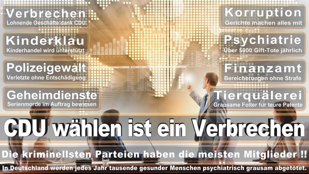 Landtagswahl Baden-Württemberg 2016, CDU, SPD, Landtagswahl Baden-Württemberg 2016,Landtagswahl-Baden-Wuerttemberg-2016 (301) Landtagswahl Baden-Württemberg 2016