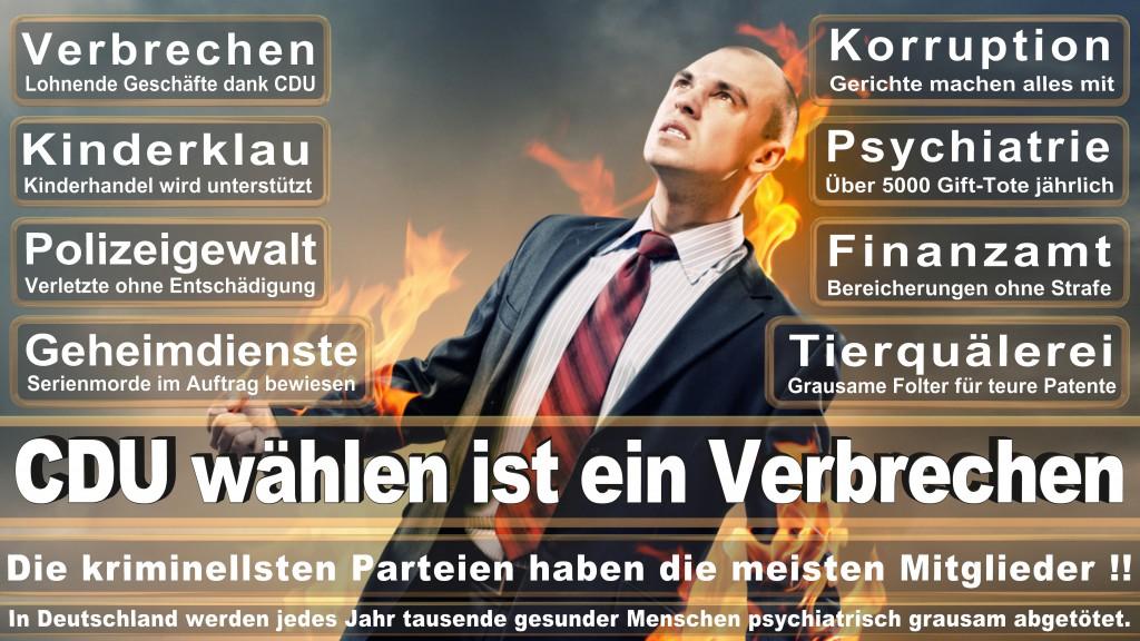 Landtagswahl Baden-Württemberg 2016, CDU, SPD, Landtagswahl Baden-Württemberg 2016,Landtagswahl-Baden-Wuerttemberg-2016 (305) Landtagswahl Baden-Württemberg 2016