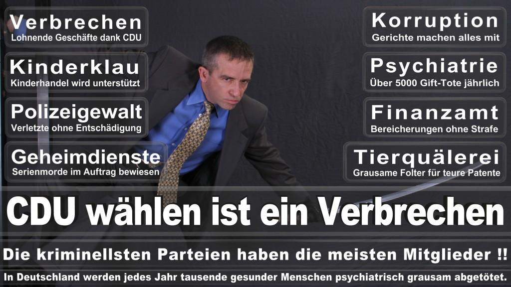 Landtagswahl Baden-Württemberg 2016, CDU, SPD, Landtagswahl Baden-Württemberg 2016,Landtagswahl-Baden-Wuerttemberg-2016 (317) Landtagswahl Baden-Württemberg 2016