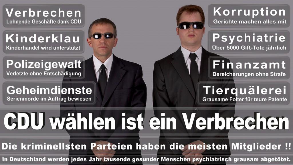 Landtagswahl Baden-Württemberg 2016, CDU, SPD, Landtagswahl Baden-Württemberg 2016,Landtagswahl-Baden-Wuerttemberg-2016 (321) Landtagswahl Baden-Württemberg 2016