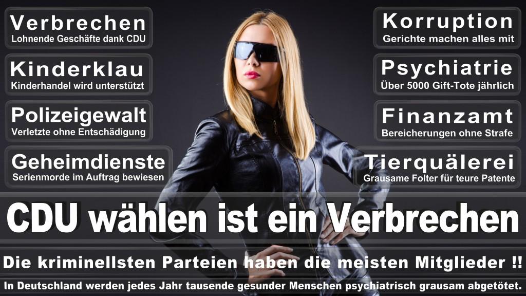 Landtagswahl Baden-Württemberg 2016, CDU, SPD, Landtagswahl Baden-Württemberg 2016,Landtagswahl-Baden-Wuerttemberg-2016 (323) Landtagswahl Baden-Württemberg 2016