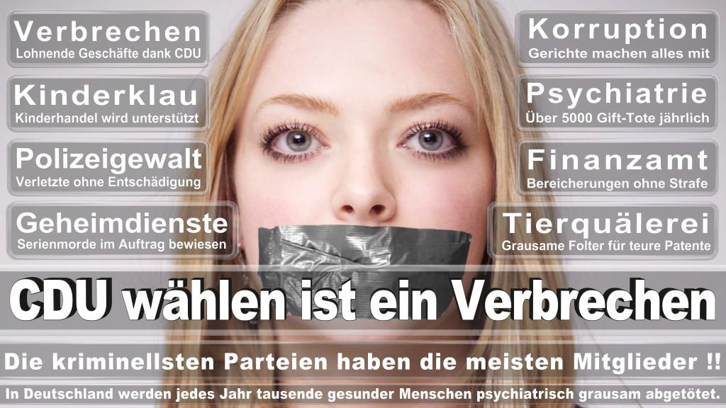 Landtagswahl Baden-Württemberg 2016, CDU, SPD, Landtagswahl Baden-Württemberg 2016,Landtagswahl-Baden-Wuerttemberg-2016 (325) Landtagswahl Baden-Württemberg 2016