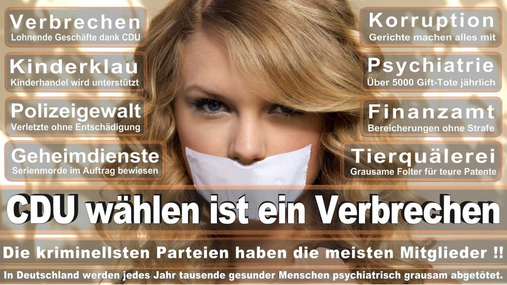 Landtagswahl Baden-Württemberg 2016, CDU, SPD, Landtagswahl Baden-Württemberg 2016,Landtagswahl-Baden-Wuerttemberg-2016 (327) Landtagswahl Baden-Württemberg 2016