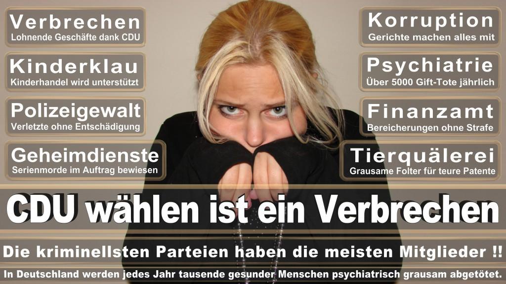 Landtagswahl Baden-Württemberg 2016, CDU, SPD, Landtagswahl Baden-Württemberg 2016,Landtagswahl-Baden-Wuerttemberg-2016 (329) Landtagswahl Baden-Württemberg 2016