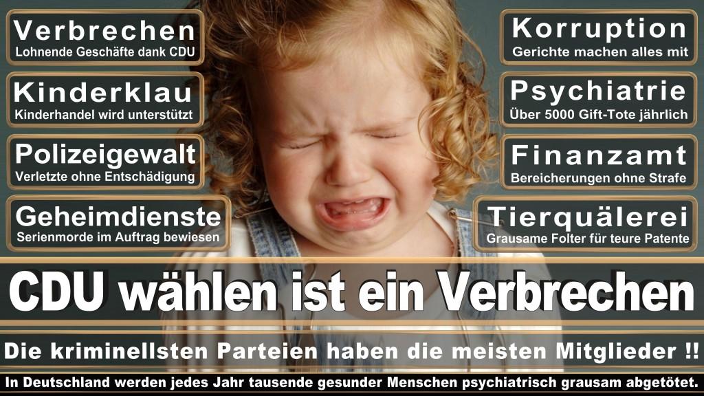 Landtagswahl Baden-Württemberg 2016, CDU, SPD, Landtagswahl Baden-Württemberg 2016,Landtagswahl-Baden-Wuerttemberg-2016 (33) Landtagswahl Baden-Württemberg 2016