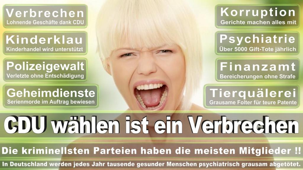 Landtagswahl Baden-Württemberg 2016, CDU, SPD, Landtagswahl Baden-Württemberg 2016,Landtagswahl-Baden-Wuerttemberg-2016 (339) Landtagswahl Baden-Württemberg 2016