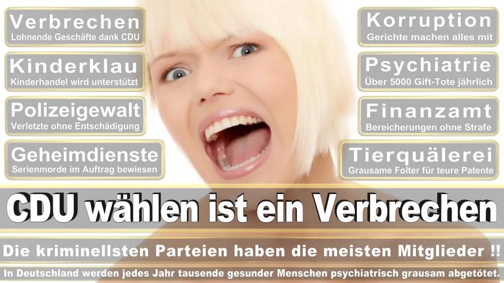 Landtagswahl Baden-Württemberg 2016, CDU, SPD, Landtagswahl Baden-Württemberg 2016,Landtagswahl-Baden-Wuerttemberg-2016 (343) Landtagswahl Baden-Württemberg 2016