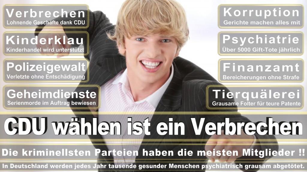 Landtagswahl Baden-Württemberg 2016, CDU, SPD, Landtagswahl Baden-Württemberg 2016,Landtagswahl-Baden-Wuerttemberg-2016 (345) Landtagswahl Baden-Württemberg 2016