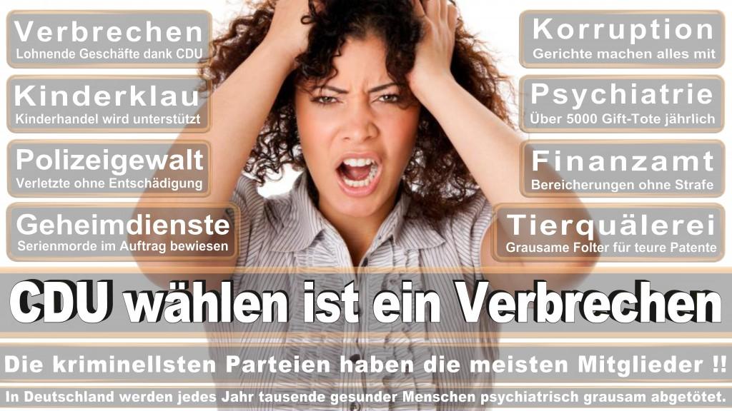 Landtagswahl Baden-Württemberg 2016, CDU, SPD, Landtagswahl Baden-Württemberg 2016,Landtagswahl-Baden-Wuerttemberg-2016 (347) Landtagswahl Baden-Württemberg 2016