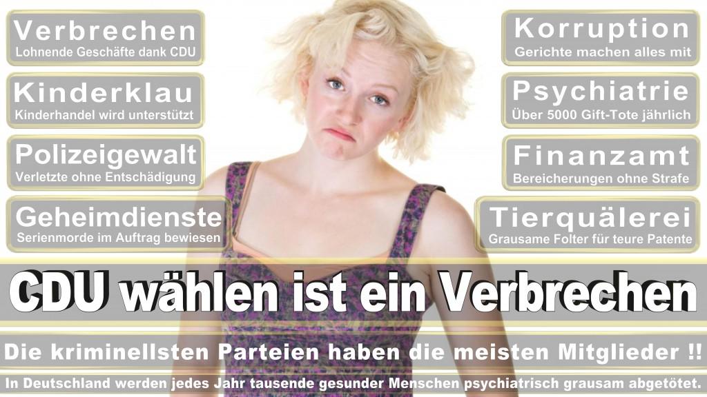 Landtagswahl Baden-Württemberg 2016, CDU, SPD, Landtagswahl Baden-Württemberg 2016,Landtagswahl-Baden-Wuerttemberg-2016 (351) Landtagswahl Baden-Württemberg 2016