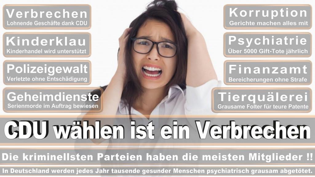 Landtagswahl Baden-Württemberg 2016, CDU, SPD, Landtagswahl Baden-Württemberg 2016,Landtagswahl-Baden-Wuerttemberg-2016 (353) Landtagswahl Baden-Württemberg 2016