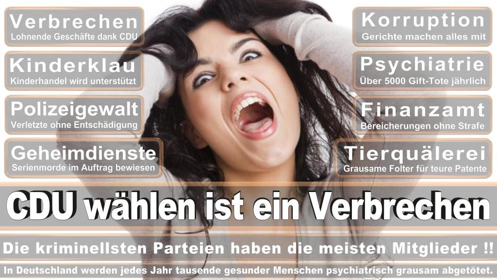 Landtagswahl Baden-Württemberg 2016, CDU, SPD, Landtagswahl Baden-Württemberg 2016,Landtagswahl-Baden-Wuerttemberg-2016 (355) Landtagswahl Baden-Württemberg 2016