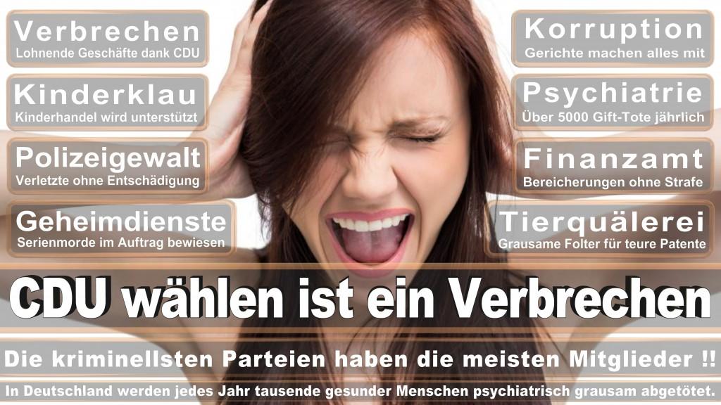 Landtagswahl Baden-Württemberg 2016, CDU, SPD, Landtagswahl Baden-Württemberg 2016,Landtagswahl-Baden-Wuerttemberg-2016 (357) Landtagswahl Baden-Württemberg 2016