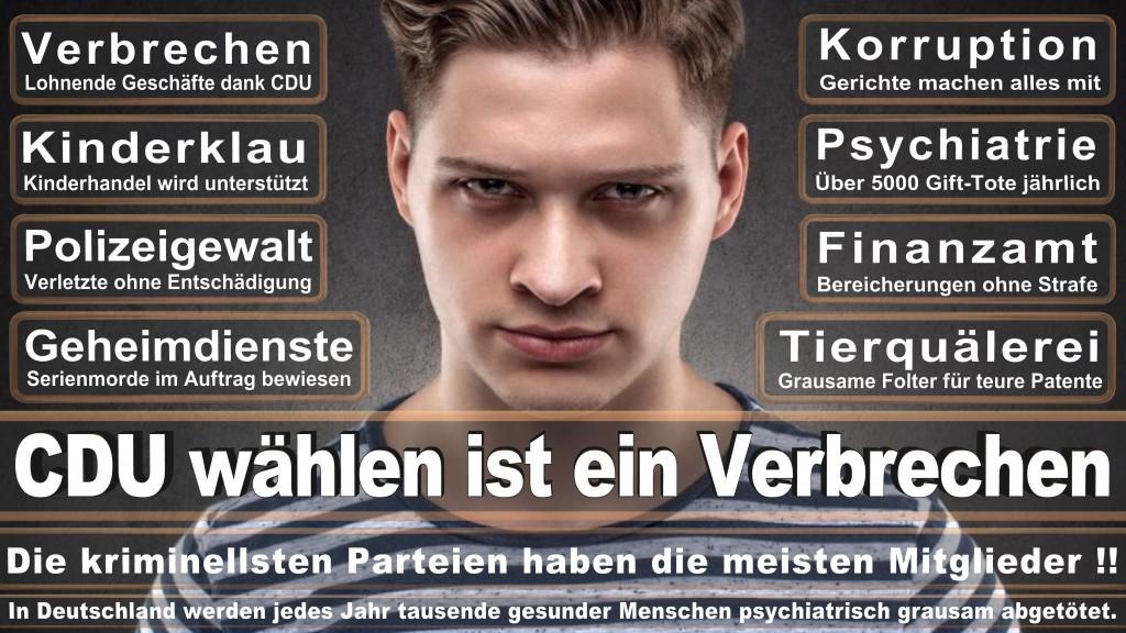 Landtagswahl Baden-Württemberg 2016, CDU, SPD, Landtagswahl Baden-Württemberg 2016,Landtagswahl-Baden-Wuerttemberg-2016 (359) Landtagswahl Baden-Württemberg 2016