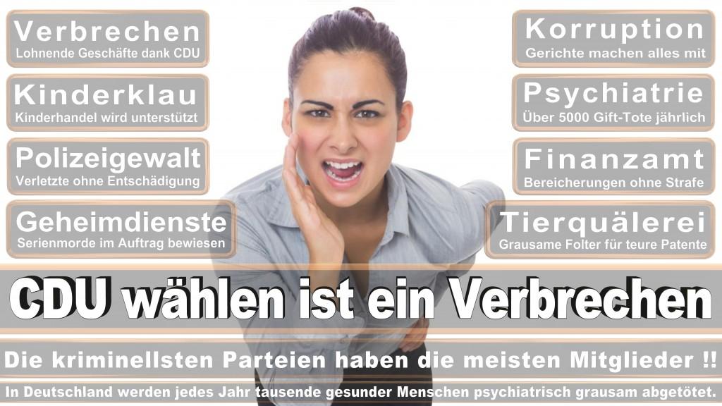 Landtagswahl Baden-Württemberg 2016, CDU, SPD, Landtagswahl Baden-Württemberg 2016,Landtagswahl-Baden-Wuerttemberg-2016 (361) Landtagswahl Baden-Württemberg 2016