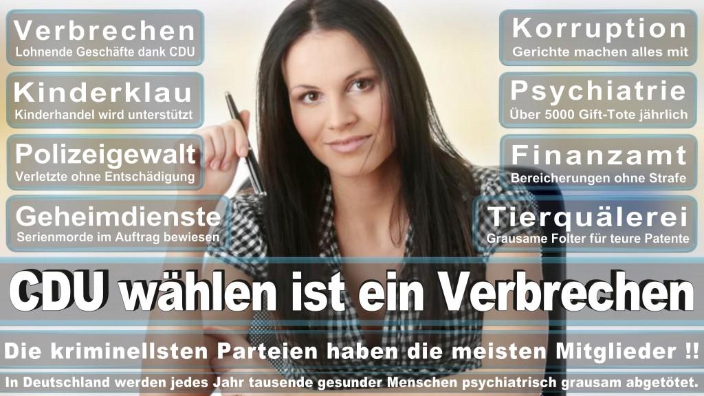 Landtagswahl Baden-Württemberg 2016, CDU, SPD, Landtagswahl Baden-Württemberg 2016,Landtagswahl-Baden-Wuerttemberg-2016 (363) Landtagswahl Baden-Württemberg 2016