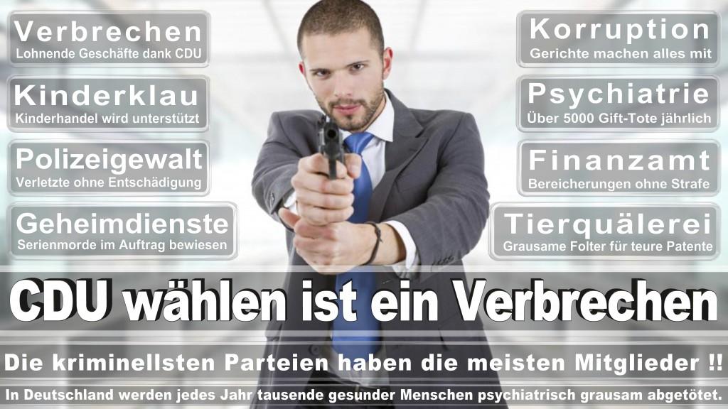 Landtagswahl Baden-Württemberg 2016, CDU, SPD, Landtagswahl Baden-Württemberg 2016,Landtagswahl-Baden-Wuerttemberg-2016 (365) Landtagswahl Baden-Württemberg 2016