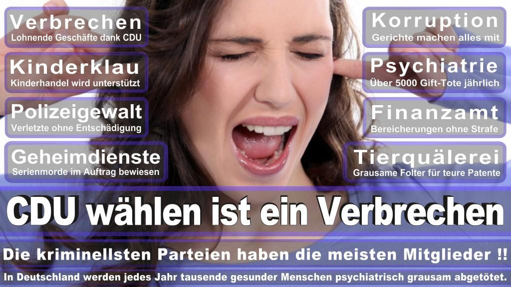 Landtagswahl Baden-Württemberg 2016, CDU, SPD, Landtagswahl Baden-Württemberg 2016,Landtagswahl-Baden-Wuerttemberg-2016 (369) Landtagswahl Baden-Württemberg 2016