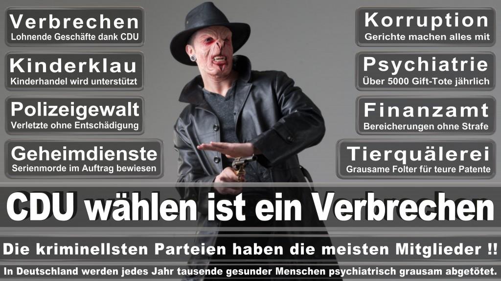 Landtagswahl Baden-Württemberg 2016, CDU, SPD, Landtagswahl Baden-Württemberg 2016,Landtagswahl-Baden-Wuerttemberg-2016 (37) Landtagswahl Baden-Württemberg 2016