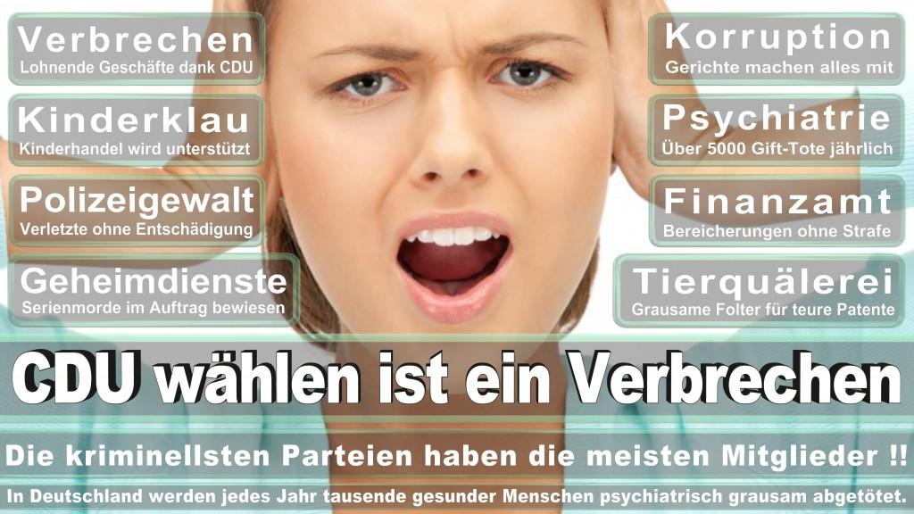 Landtagswahl Baden-Württemberg 2016, CDU, SPD, Landtagswahl Baden-Württemberg 2016,Landtagswahl-Baden-Wuerttemberg-2016 (371) Landtagswahl Baden-Württemberg 2016