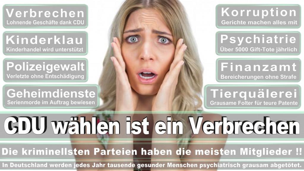 Landtagswahl Baden-Württemberg 2016, CDU, SPD, Landtagswahl Baden-Württemberg 2016,Landtagswahl-Baden-Wuerttemberg-2016 (373) Landtagswahl Baden-Württemberg 2016