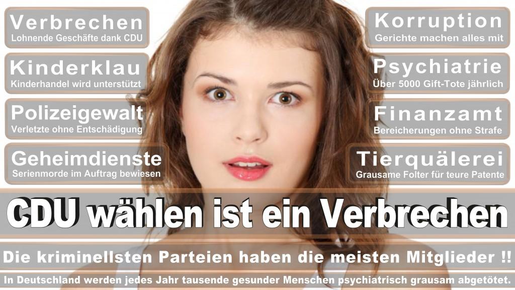 Landtagswahl Baden-Württemberg 2016, CDU, SPD, Landtagswahl Baden-Württemberg 2016,Landtagswahl-Baden-Wuerttemberg-2016 (375) Landtagswahl Baden-Württemberg 2016