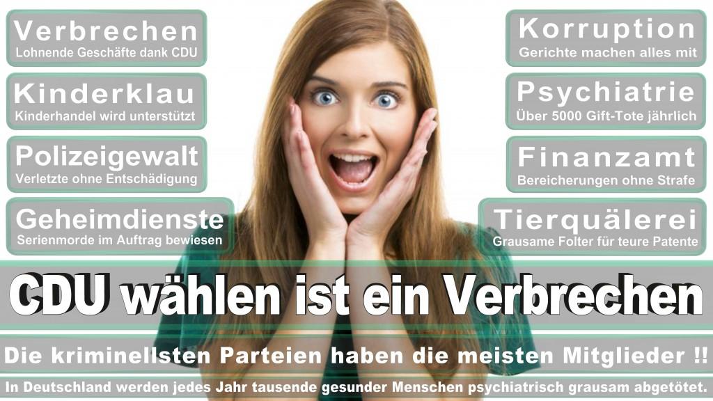 Landtagswahl Baden-Württemberg 2016, CDU, SPD, Landtagswahl Baden-Württemberg 2016,Landtagswahl-Baden-Wuerttemberg-2016 (377) Landtagswahl Baden-Württemberg 2016