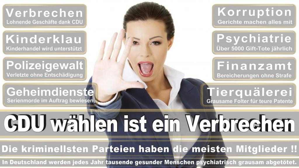 Landtagswahl Baden-Württemberg 2016, CDU, SPD, Landtagswahl Baden-Württemberg 2016,Landtagswahl-Baden-Wuerttemberg-2016 (381) Landtagswahl Baden-Württemberg 2016