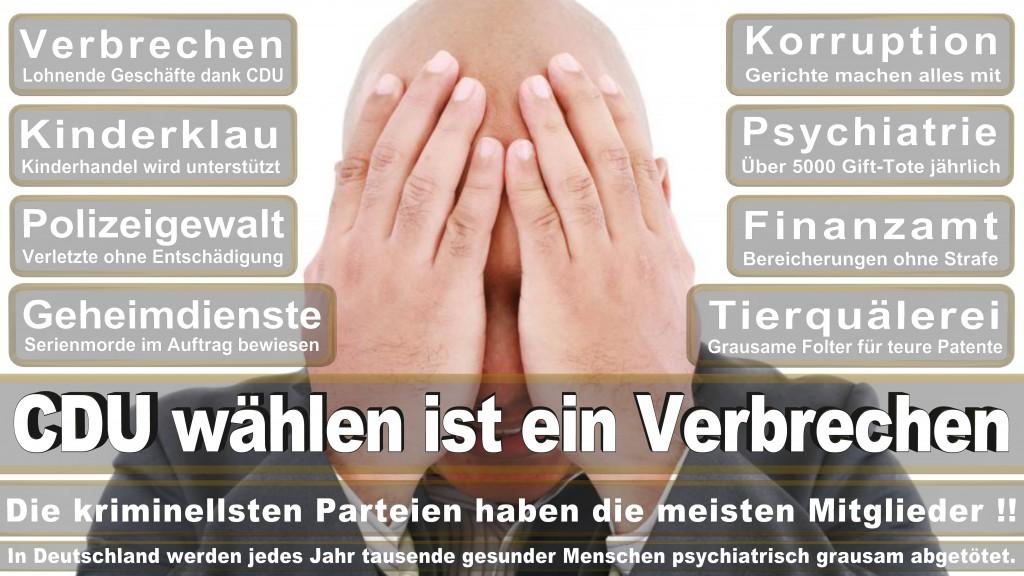 Landtagswahl Baden-Württemberg 2016, CDU, SPD, Landtagswahl Baden-Württemberg 2016,Landtagswahl-Baden-Wuerttemberg-2016 (387) Landtagswahl Baden-Württemberg 2016
