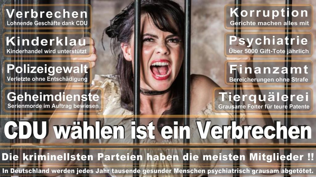 Landtagswahl Baden-Württemberg 2016, CDU, SPD, Landtagswahl Baden-Württemberg 2016,Landtagswahl-Baden-Wuerttemberg-2016 (389) Landtagswahl Baden-Württemberg 2016