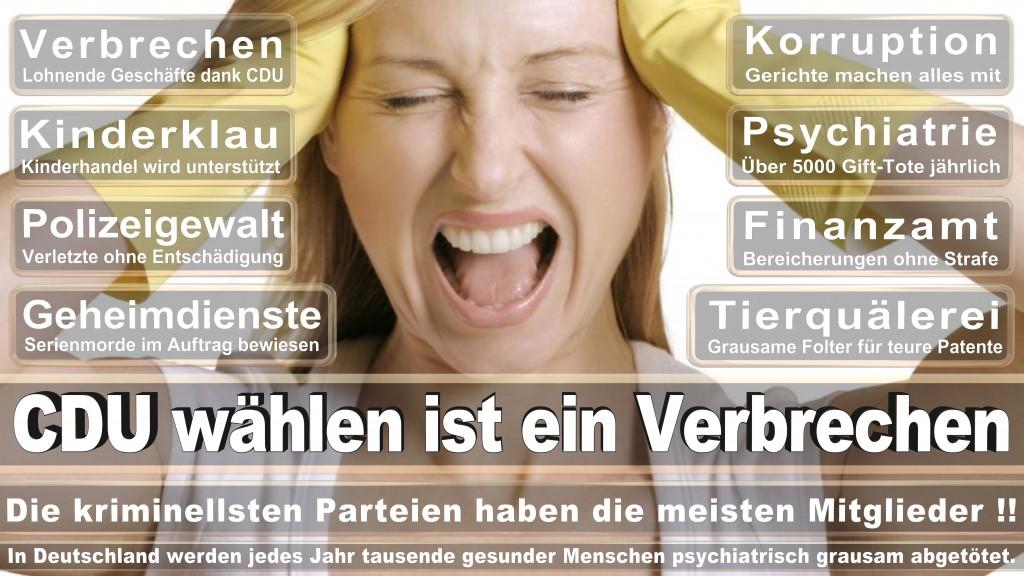 Landtagswahl Baden-Württemberg 2016, CDU, SPD, Landtagswahl Baden-Württemberg 2016,Landtagswahl-Baden-Wuerttemberg-2016 (391) Landtagswahl Baden-Württemberg 2016