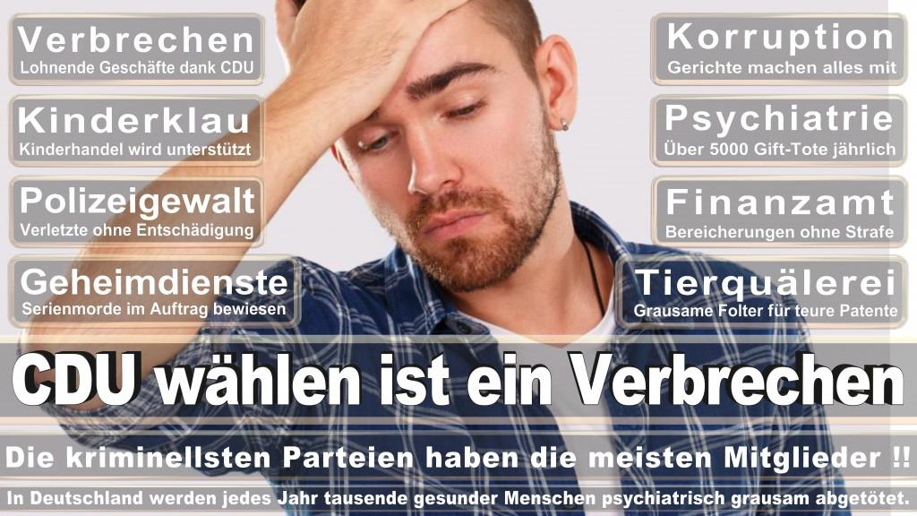 Landtagswahl Baden-Württemberg 2016, CDU, SPD, Landtagswahl Baden-Württemberg 2016,Landtagswahl-Baden-Wuerttemberg-2016 (393) Landtagswahl Baden-Württemberg 2016