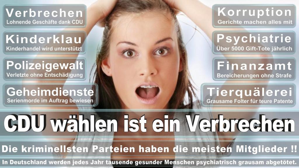 Landtagswahl Baden-Württemberg 2016, CDU, SPD, Landtagswahl Baden-Württemberg 2016,Landtagswahl-Baden-Wuerttemberg-2016 (395) Landtagswahl Baden-Württemberg 2016