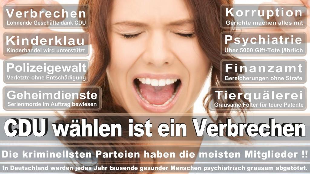 Landtagswahl Baden-Württemberg 2016, CDU, SPD, Landtagswahl Baden-Württemberg 2016,Landtagswahl-Baden-Wuerttemberg-2016 (397) Landtagswahl Baden-Württemberg 2016