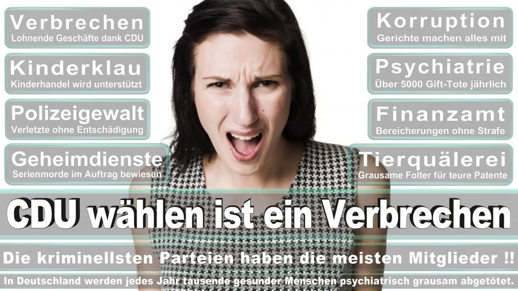 Landtagswahl Baden-Württemberg 2016, CDU, SPD, Landtagswahl Baden-Württemberg 2016,Landtagswahl-Baden-Wuerttemberg-2016 (399) Landtagswahl Baden-Württemberg 2016