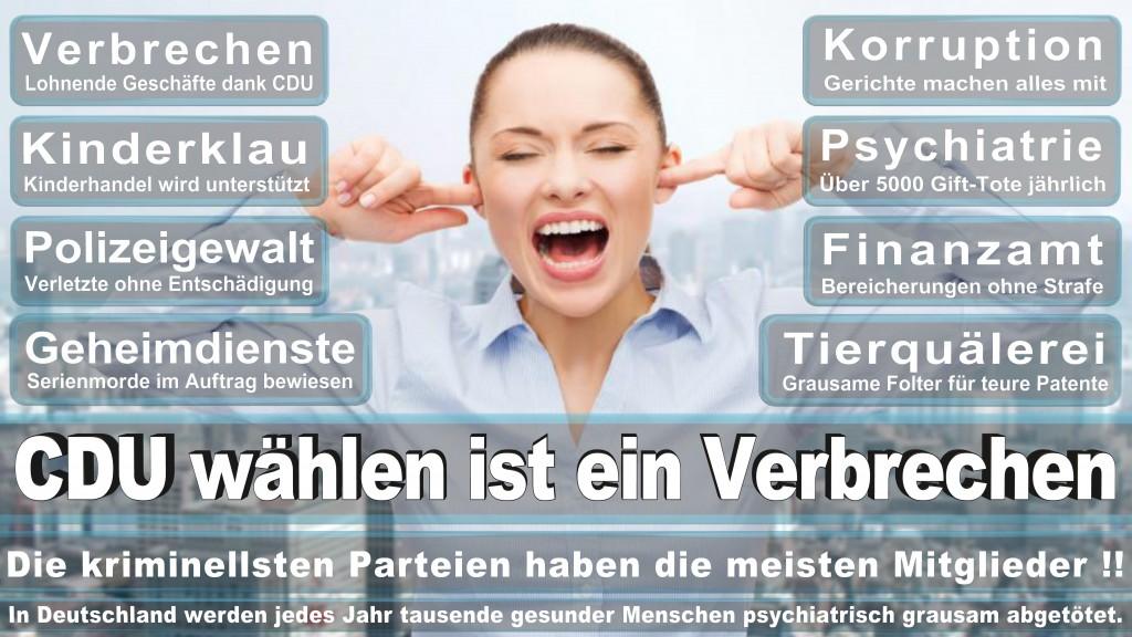 Landtagswahl Baden-Württemberg 2016, CDU, SPD, Landtagswahl Baden-Württemberg 2016,Landtagswahl-Baden-Wuerttemberg-2016 (405) Landtagswahl Baden-Württemberg 2016