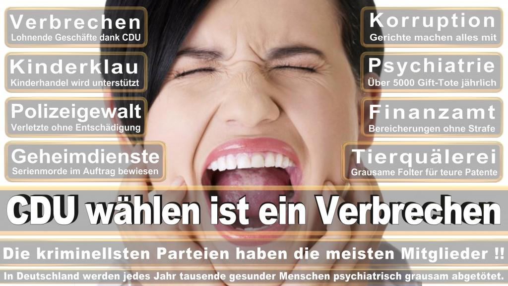 Landtagswahl Baden-Württemberg 2016, CDU, SPD, Landtagswahl Baden-Württemberg 2016,Landtagswahl-Baden-Wuerttemberg-2016 (407) Landtagswahl Baden-Württemberg 2016