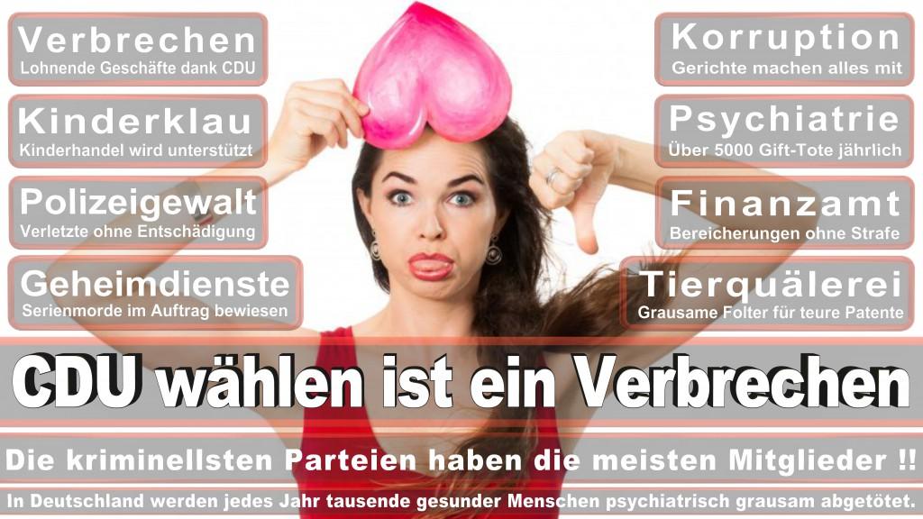 Landtagswahl Baden-Württemberg 2016, CDU, SPD, Landtagswahl Baden-Württemberg 2016,Landtagswahl-Baden-Wuerttemberg-2016 (413) Landtagswahl Baden-Württemberg 2016