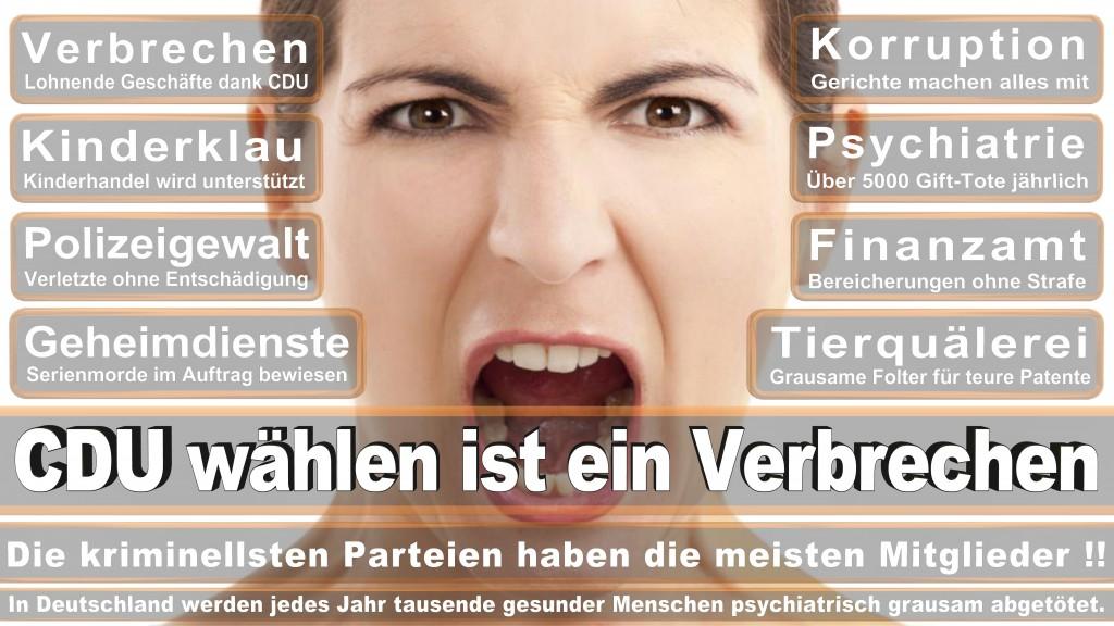 Landtagswahl-Baden-Wuerttemberg-2016 (415)