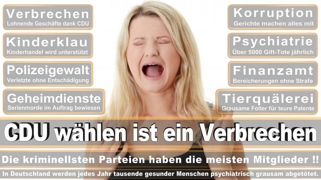 Landtagswahl Baden-Württemberg 2016, CDU, SPD, Landtagswahl Baden-Württemberg 2016,Landtagswahl-Baden-Wuerttemberg-2016 (417) Landtagswahl Baden-Württemberg 2016