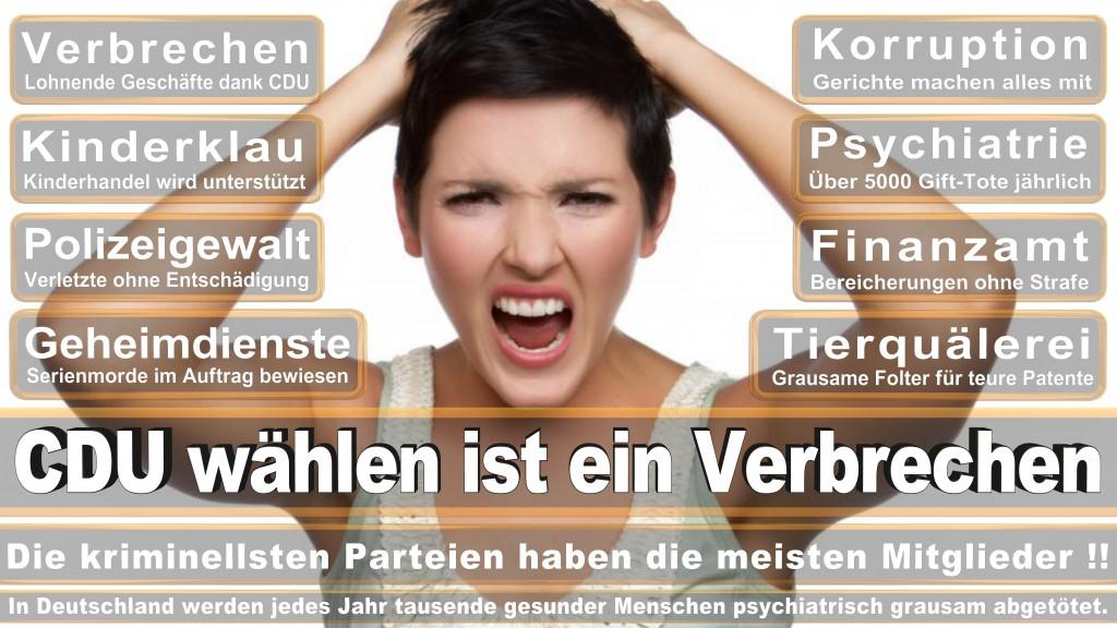 Landtagswahl Baden-Württemberg 2016, CDU, SPD, Landtagswahl Baden-Württemberg 2016,Landtagswahl-Baden-Wuerttemberg-2016 (423) Landtagswahl Baden-Württemberg 2016