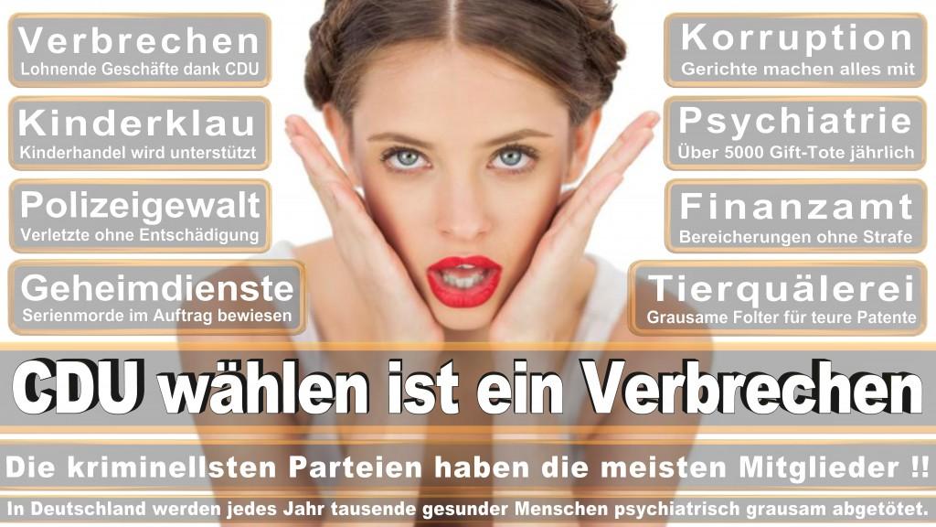 Landtagswahl Baden-Württemberg 2016, CDU, SPD, Landtagswahl Baden-Württemberg 2016,Landtagswahl-Baden-Wuerttemberg-2016 (425) Landtagswahl Baden-Württemberg 2016