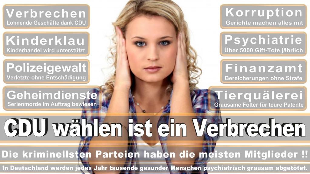 Landtagswahl Baden-Württemberg 2016, CDU, SPD, Landtagswahl Baden-Württemberg 2016,Landtagswahl-Baden-Wuerttemberg-2016 (427) Landtagswahl Baden-Württemberg 2016