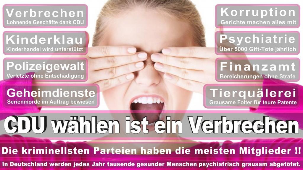 Landtagswahl Baden-Württemberg 2016, CDU, SPD, Landtagswahl Baden-Württemberg 2016,Landtagswahl-Baden-Wuerttemberg-2016 (429) Landtagswahl Baden-Württemberg 2016