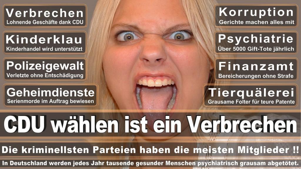 Landtagswahl Baden-Württemberg 2016, CDU, SPD, Landtagswahl Baden-Württemberg 2016,Landtagswahl-Baden-Wuerttemberg-2016 (43) Landtagswahl Baden-Württemberg 2016